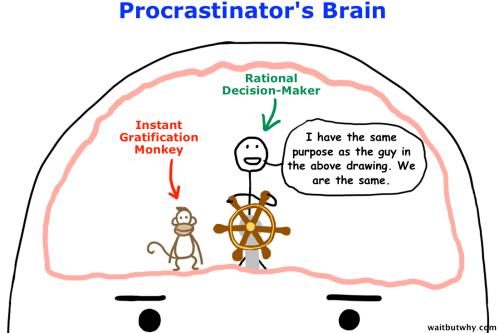 P brain